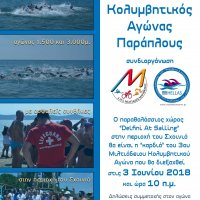 3ος Κολυμβητικός αγώνας